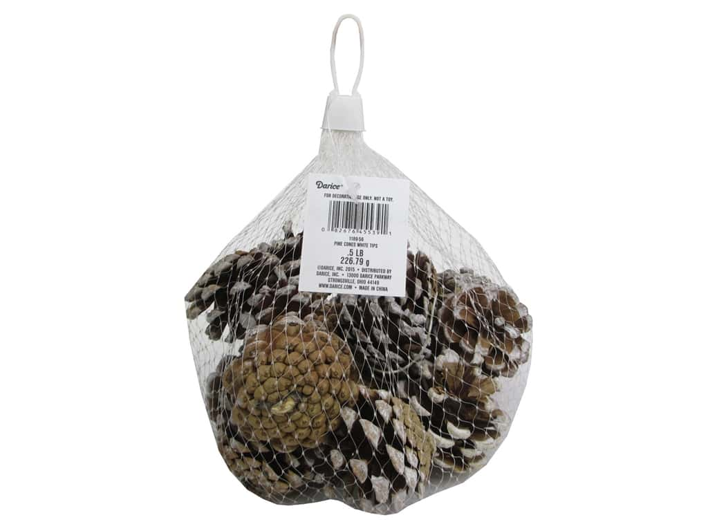 Darice Pine Cones Natural with White Tips 1/2 lb.