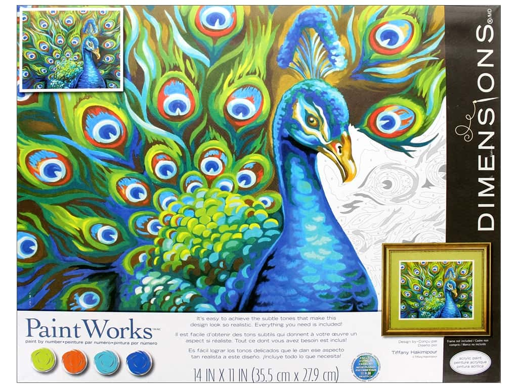 Dimensions PaintWorks Paint By Number 14 in. x 11 in. Wild Feathers