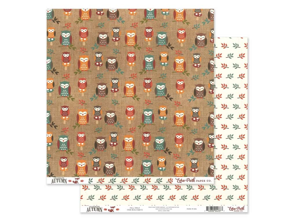Echo Park Celebrate Autumn Paper 12 in. x 12 in. Fall Owls (25 pieces)