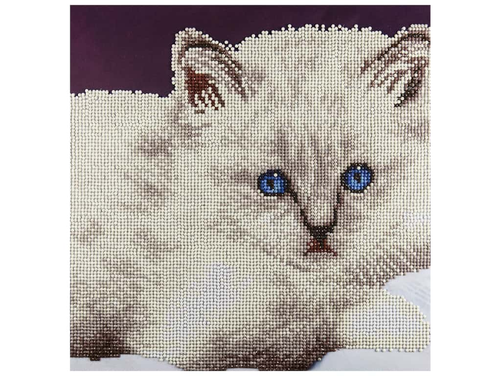 Diamond Art Kit 12 x 12 in. White Cat