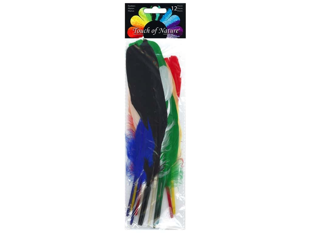 Midwest Design Feather Indian 7 in. -8 in. Assorted 12 pc
