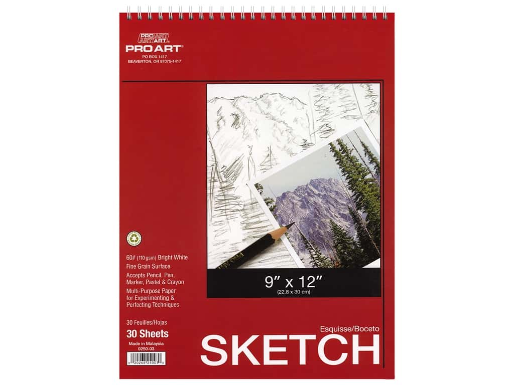 Pro Art Sketch Paper Pad 65 lb 9 in. x 12 in. Wire Bound 30 pc