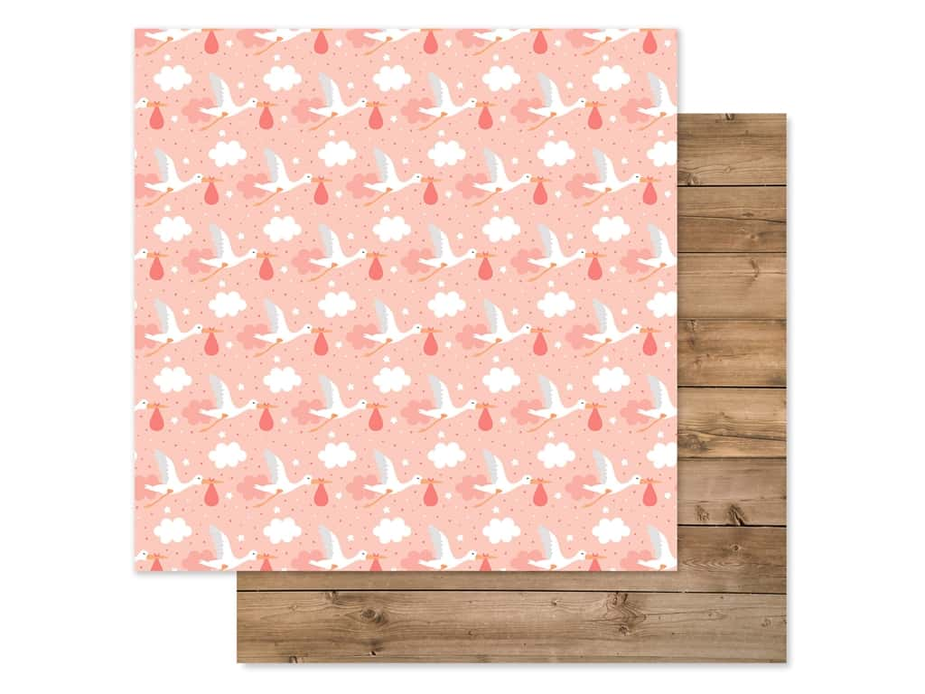 Echo Park Baby Girl Collection Paper 12 in. x 12 in. Little One (25 pieces)