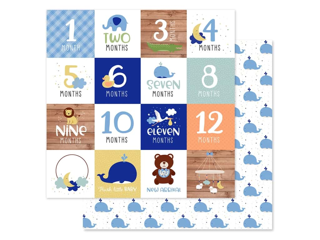 "Echo Park Collection Baby Boy Paper 12""x 12"" Milestone Cards (25 pieces)"